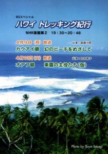 BSスペシャル ハワイ トレッキング紀行の詳細ページへ