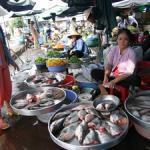 世界ふれあい街歩き  カントー~ベトナム~の詳細ページへ