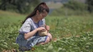 """恋する雑貨 『カナダ """"赤毛のアン""""の雑貨たち』の詳細ページへ"""