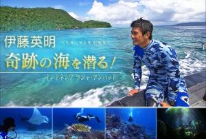伊藤英明 奇跡の海を潜る! ~インドネシア ラジャ・アンパット~(再放送)の詳細ページへ