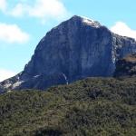 体感!グレートネイチャー「タスマニア10億年の神秘~オーストラリア 赤い海と幻の森~」の詳細ページへ