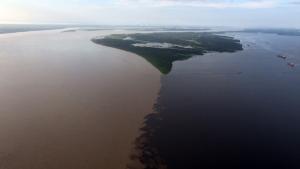 """驚き!地球!グレートネイチャー 「神秘!""""黄金大河""""の謎を追え ~南米 アマゾン~」の詳細ページへ"""