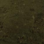 ニッポンの里山 ふるさとの絶景に出会う旅 「城下かれいを育む湧き水 ~大分県 日出町~」の詳細ページへ