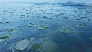 アーススキャナー File9.「湖に浮かぶ無数のリング」の詳細ページへ