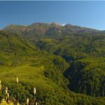 さわやか自然百景「御嶽山の森」の詳細ページへ