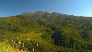 さわやか自然百景「御嶽山の森」4K放送の詳細ページへ